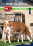 Auzred XB 2019 Montbeliarde Sire Catalogue